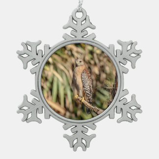 Red Shouldered Hawk in a tree Snowflake Pewter Christmas Ornament