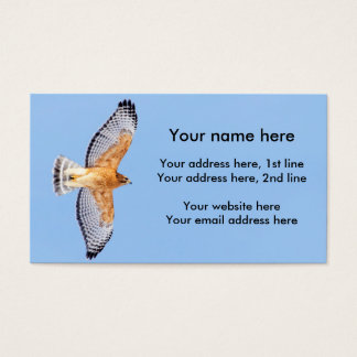 Red Shouldered Hawk in flight Business Card