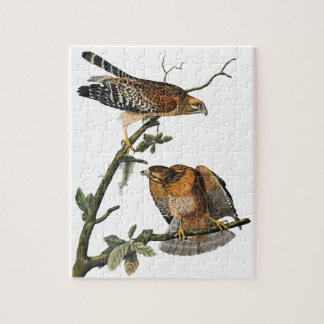 Red-shouldered Hawk Jigsaw Puzzle