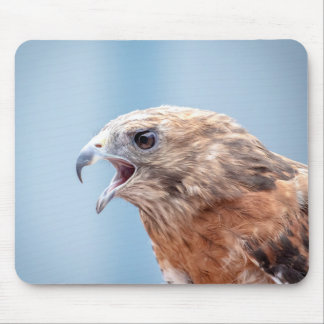 Red Shouldered Hawk Mouse Pad