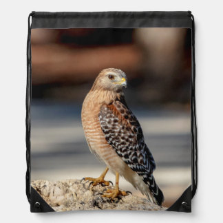 Red Shouldered Hawk on a rock Drawstring Bag
