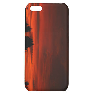 Red Skies iPhone 5C Cases