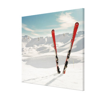 Red Skis Canvas Prints