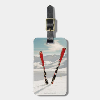 Red Skis Luggage Tag