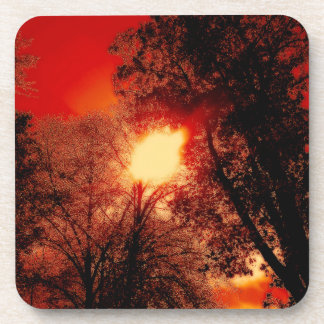 Red Sky And The Burning Sun Drink Coasters