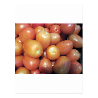 Red Small Tomatoes Postcard