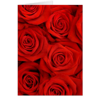 Red Spectacular Roses Card