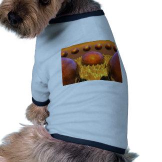 Red Spheres Ringer Dog Shirt