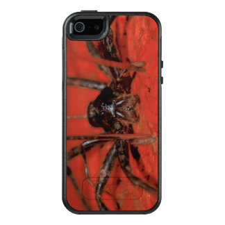 red spider iPhone case