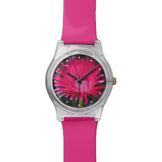 Red Spike Ice Plant Bloom Watches