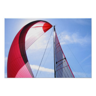 Red Spinnaker With Sun Poster