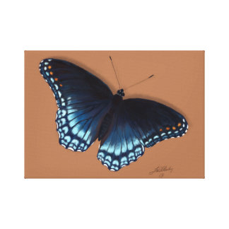 Red-Spotted Purple Admiral Butterfly Painting Canvas Print