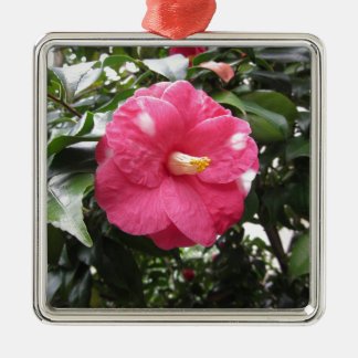Red spotted white flower of Camellia Marmorata Metal Ornament