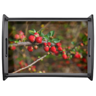 Red Spring Buds Serving Tray