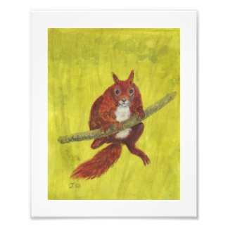 Red Squirrel 2, painting Photographic Print