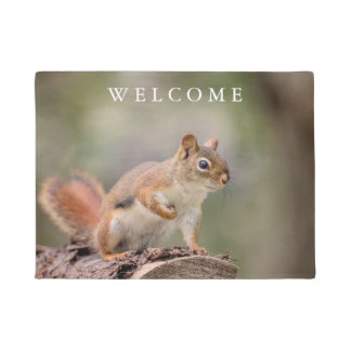 Red Squirrel Doormat