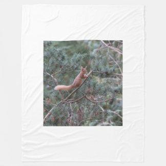 Red squirrel fleece blanket