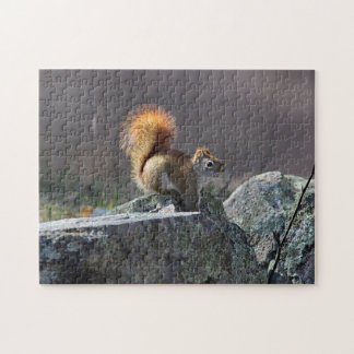 Red squirrel jigsaw puzzle