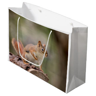 Red Squirrel Large Gift Bag