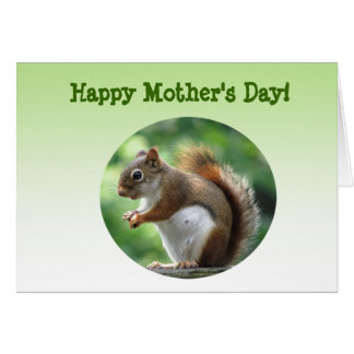 Red Squirrel Mothers Day Card