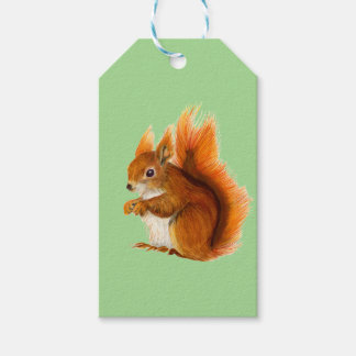 Red Squirrel Painted in Watercolor Wildlife Art Gift Tags