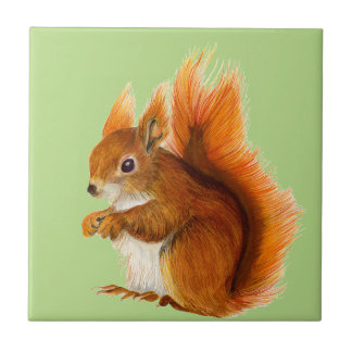 Red Squirrel Painted in Watercolor Wildlife Art Tile