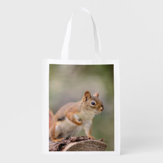 Red Squirrel Reusable Grocery Bag