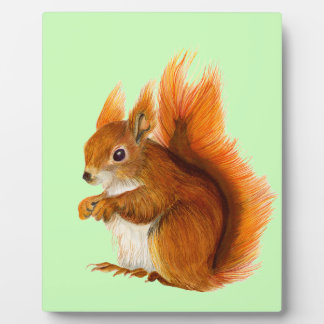 Red Squirrel Watercolor Painting Wildlife Artwork Plaque