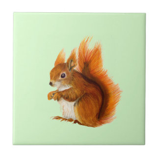 Red Squirrel Watercolor Painting Wildlife Artwork Tile