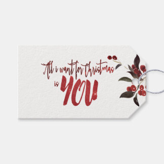 Red Starry Sky All I Want For Christmas Is YOU Gift Tags