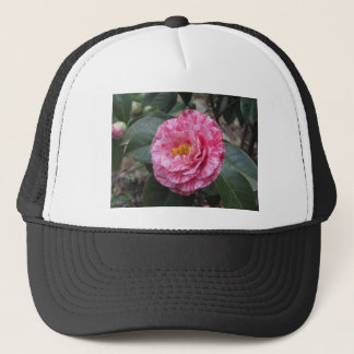 Red streaked white flower of Camellia japonica Trucker Hat
