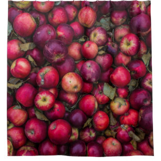 Red summer apples pattern shower curtain