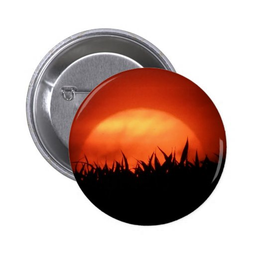 Red sundown behind black grass buttons
