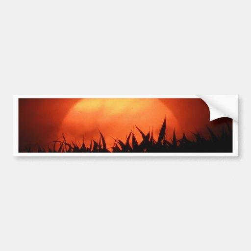 Red sundown behind black grass bumper stickers