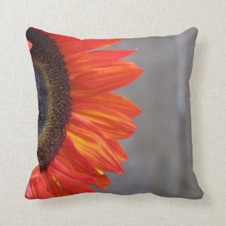 Red Sunflower Blooming in Spring Cushions