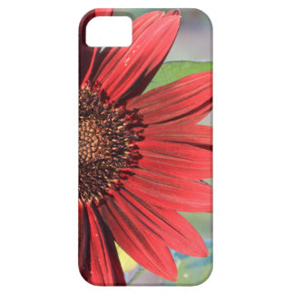 Red Sunflower iPhone 5 Case