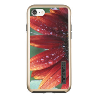 Red Sunflower Petals And Rain Drops Incipio DualPro Shine iPhone 8/7 Case