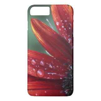 Red Sunflower Petals And Rain Drops iPhone 8 Plus/7 Plus Case