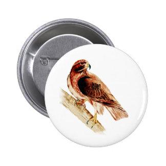 Red Tail Hawk 6 Cm Round Badge
