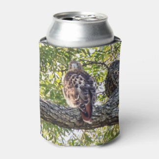 Red Tail Hawk Can Cooler