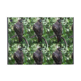 Red Tail Hawk Covers For iPad Mini