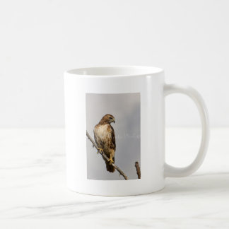 Red Tail Hawk Basic White Mug