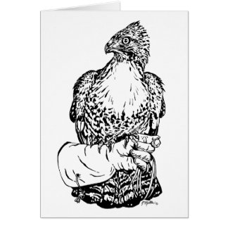Red-tail Hawk on Glove Card
