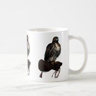 Red-tail Hawk on Glove Coffee Mug
