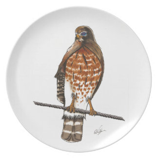 Red Tail Hawk Party Plates