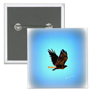 Red Tail Hawk Picture Pins