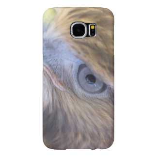 Red-tail Hawk Samsung Galaxy S6 Cases