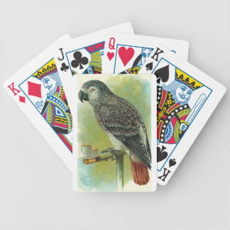 Red Tail Parrot Playing Cards