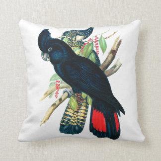 Red tailed, Black (Banksian) Cockatoos. Cushion