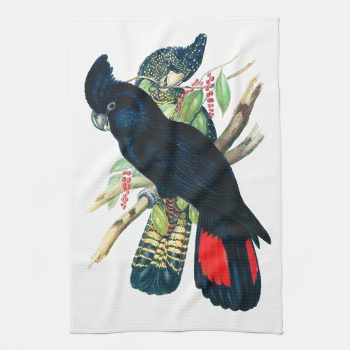 Red tailed, Black (Banksian) Cockatoos. Kitchen Towel